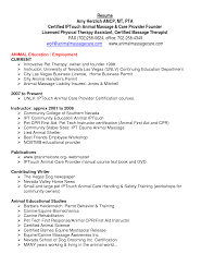 art education resume examples   resume summary examples managementart education resume examples resume samples free sample resume examples physical therapy assistant resume pdf by