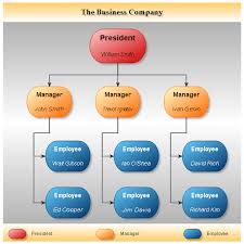 net org chart control   org charts  amp  org diagram gallery   nevronbusiness organization  organizational chart