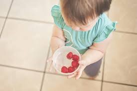 Altruistic babies? Study shows <b>infants</b> are willing to give up food ...