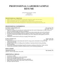 resume profile summary example professional profile templates resume profile summary example 5012