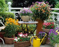 apartment patio garden