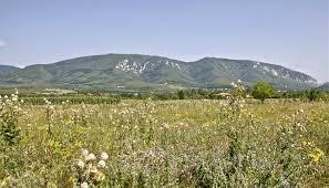 Homolje mountains