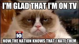 Grumpy-Cat-Meme-104.jpg via Relatably.com