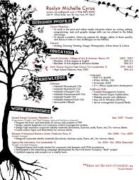 resume designs   best creative resume design infographics    rozmichelle resume design
