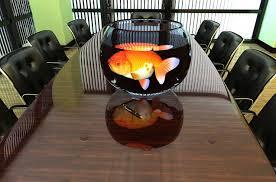 photo gallery aquarium office