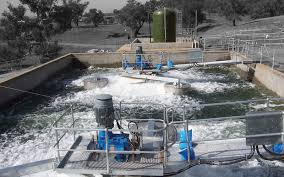 essay on the water management by the public and government water management by the public