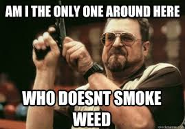 funny_memes_about_smoking_weed-5.jpg via Relatably.com