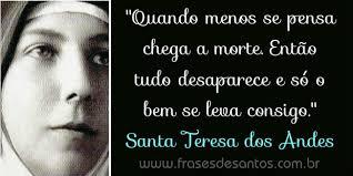 Image result for santa teresa dos andes