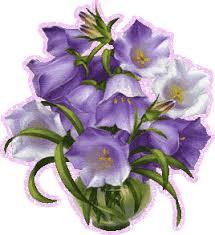 Картинки по запросу Красивые картинки цветка колокольчика
