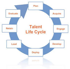 Image result for talent management