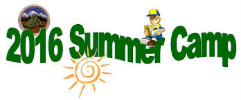 Image result for bsa summer fun pics
