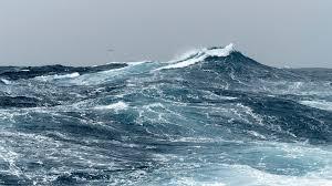 Marine Stewardship Council: Sustainable <b>Fishing</b> | MSC