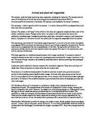 imgjpg imgjpg animal plant cell essay  best custom written essays from  per
