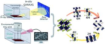 Degradation mechanisms in mixed-<b>cation</b> and mixed-halide CsxFA1 ...
