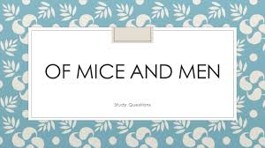 essay mice of men essay of mice and men essay on dreams of and essay essay questions answers mice men ipgproje com mice of men essay of mice