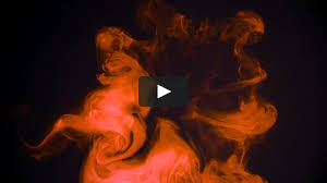<b>L'Oréal Botanicals Safflower</b> on Vimeo