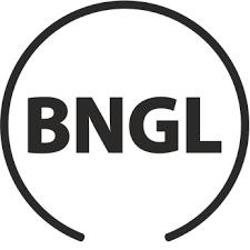 <b>BNGL</b> - индивидуальные <b>браслеты</b> с надписью