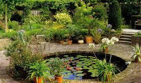 Картинки по запросу водоем в саду