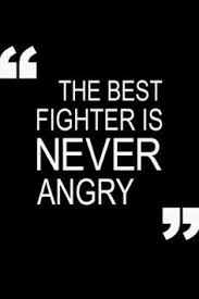 Quotes About Being A Fighter. QuotesGram via Relatably.com