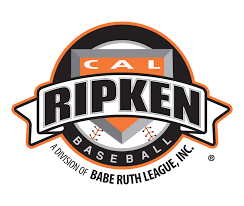 Image result for Cal Ripken baseball