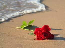 عندما   يُقابل الحب بالخيانة ..! Images?q=tbn:ANd9GcSZbY5cRdhFI_BQliCZnaV4u5uruNCzBB07xBZbd_DcJ7BOjGbU