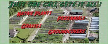<b>New</b> Jersey <b>Wholesale</b> Perennial Growers - Cicconi Farms Inc ...