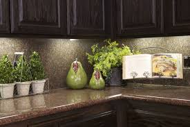 dishy kitchen counter decorating ideas:  kitchen decorating ideas for the real home countertops cabinets and plants