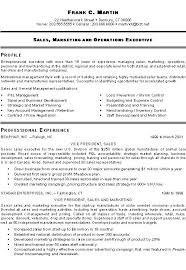 marketing sales executive resume example sample executive resume format