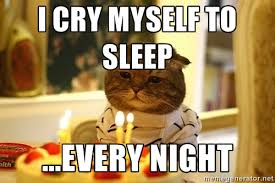 I cry myself to sleep ...every night - sad birthday cat | Meme ... via Relatably.com