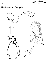 Penguin Life Cycle Worksheet (No Words)worksheets