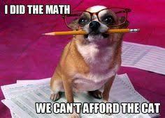 Funny Memes on Pinterest | Chihuahuas, Meme and Ninjas via Relatably.com