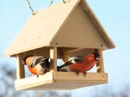 Как сделать <b>кормушку</b> и <b>скворечник</b> для птиц своими руками: 50 ...