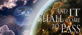 Image result for DID THE SHEMITAH