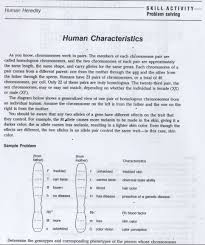 skill activity problem solving human characteristics answer key page 1