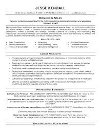 resume combination resume example template combination resume example