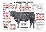 Images & Illustrations of cut of beef