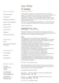 it manager cv example resume it template