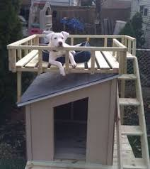 two story dog house built   the left over scrap wood   ideas     Drool Worthy DIY Dog House Plans