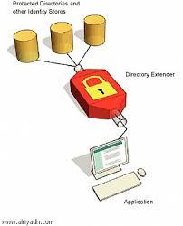 الخصوصية وسرية البيانات حاسوب صف عاشر