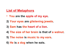 Image result for metaphors