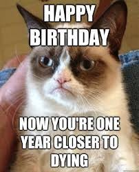 IK HAAT LA DEGUE on Pinterest | I Hate You, Grumpy Cat Meme and Search via Relatably.com