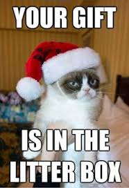 Grumpy Cat on Pinterest | Grumpy Cat Meme, Meme and Mona Lisa via Relatably.com