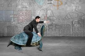 Bildresultat för långsam sköldpadda
