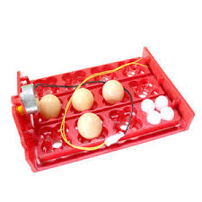 Купите 12v <b>egg incubator</b> онлайн в приложении AliExpress ...