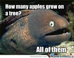 Bad Joke Eel by corbuiser - Meme Center via Relatably.com