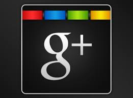 Image result for google + icon vector