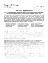 sample resume objective for marketing position shopgrat profit driven marketing manager objective resume samples professional experience sample resume