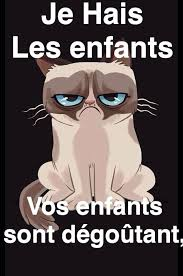 Grumpy cat meme I did in french. (Translation: I hate children ... via Relatably.com