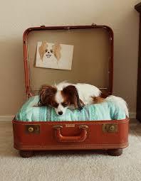<b>Лежак для собаки</b> своими руками: 12 пошаговых вариантов на ...