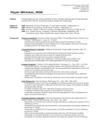 example of resume summary of qualifications write a successful example of resume summary of qualifications resume qualifications examples resume summary of social work resume bsw